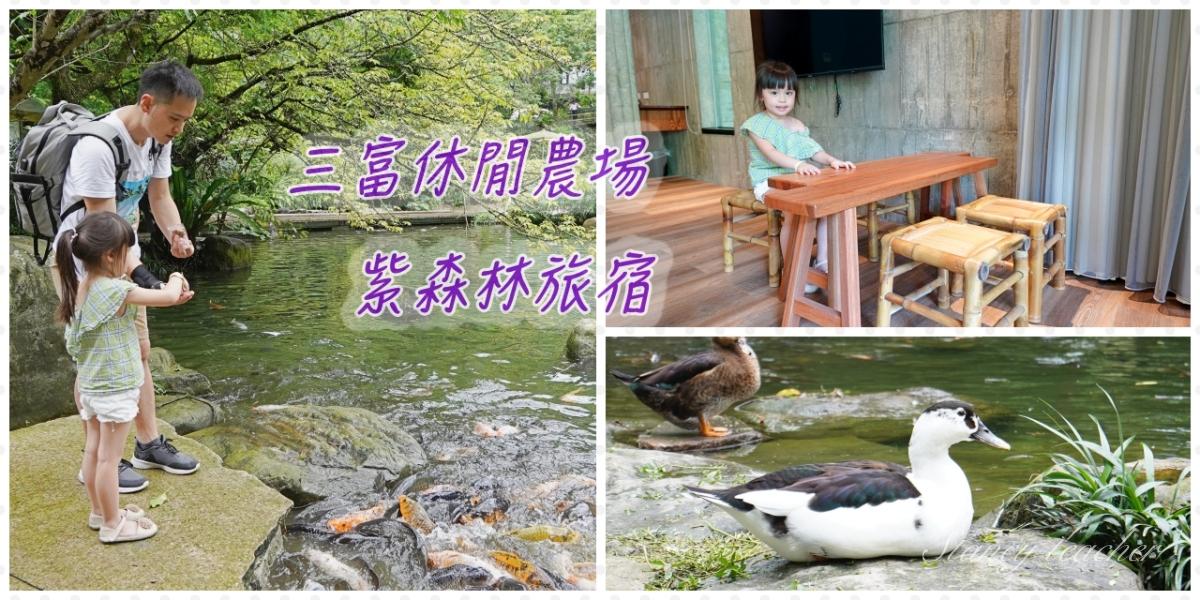三富休閒農場|紫森林旅宿新開幕|宜蘭清水模自然系旅宿(房型、價格)