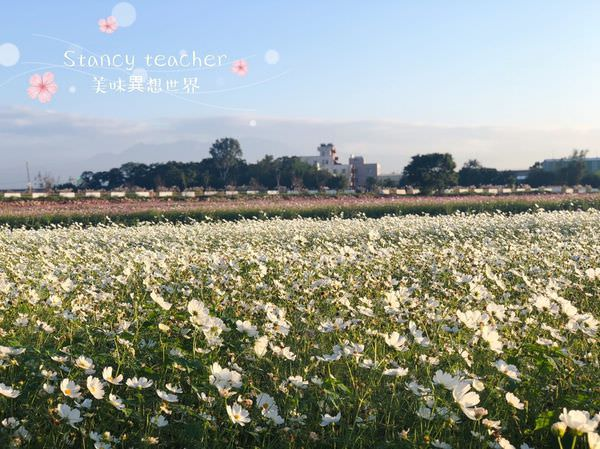 割稻飯_181202_0042_0.jpg