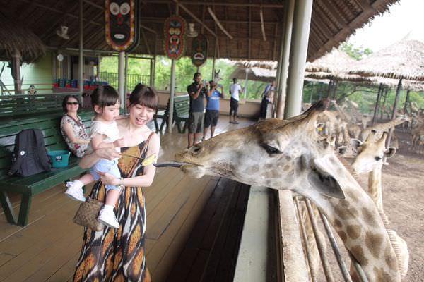 <2017國外親子旅遊>泰國曼谷【泰國最大野生動物園】Safari World