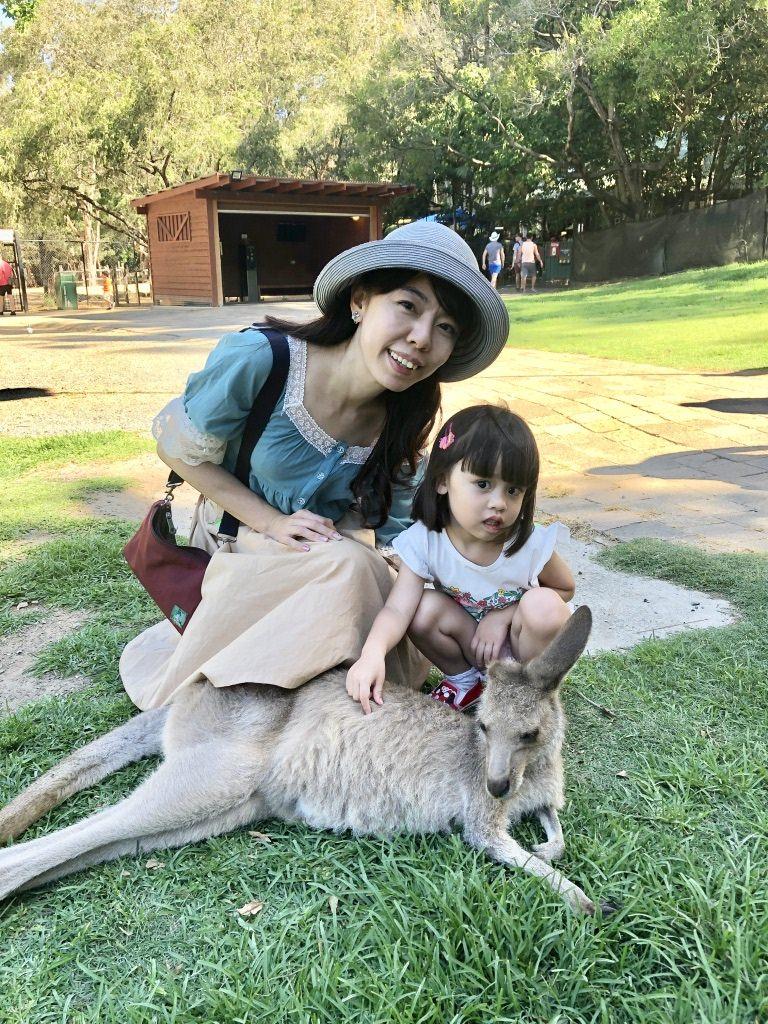 澳洲庫倫賓動物園 可愛袋鼠零距離 抱抱無尾熊
